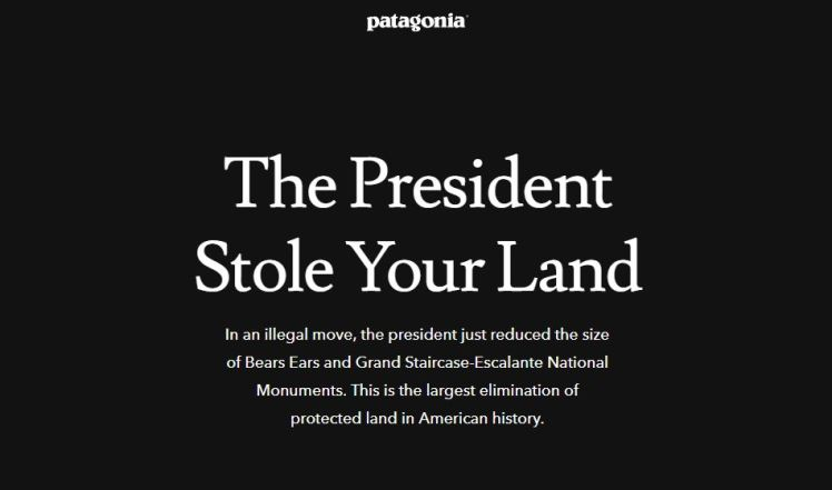 Fashion retail activism fashion politics patagonia president stole your land