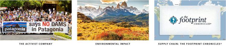 Patagonia Environmentalism
